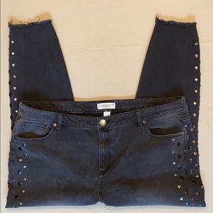 Lane Bryant Edgy Jeans